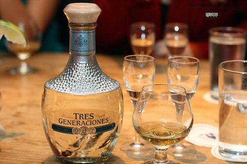 We were treated to Tres Generaciones Plata, Reposado, and Anejo tequilas.