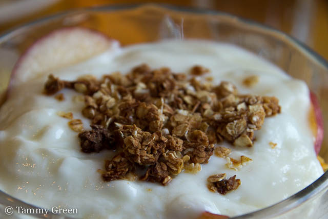 Yogurt | Uncommon Ground