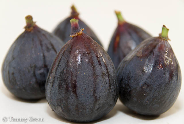 Figs | Black Mission