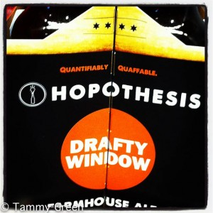Hopothesis Drafty Window