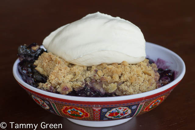 Blueberry Cobbler | Laughing Bird